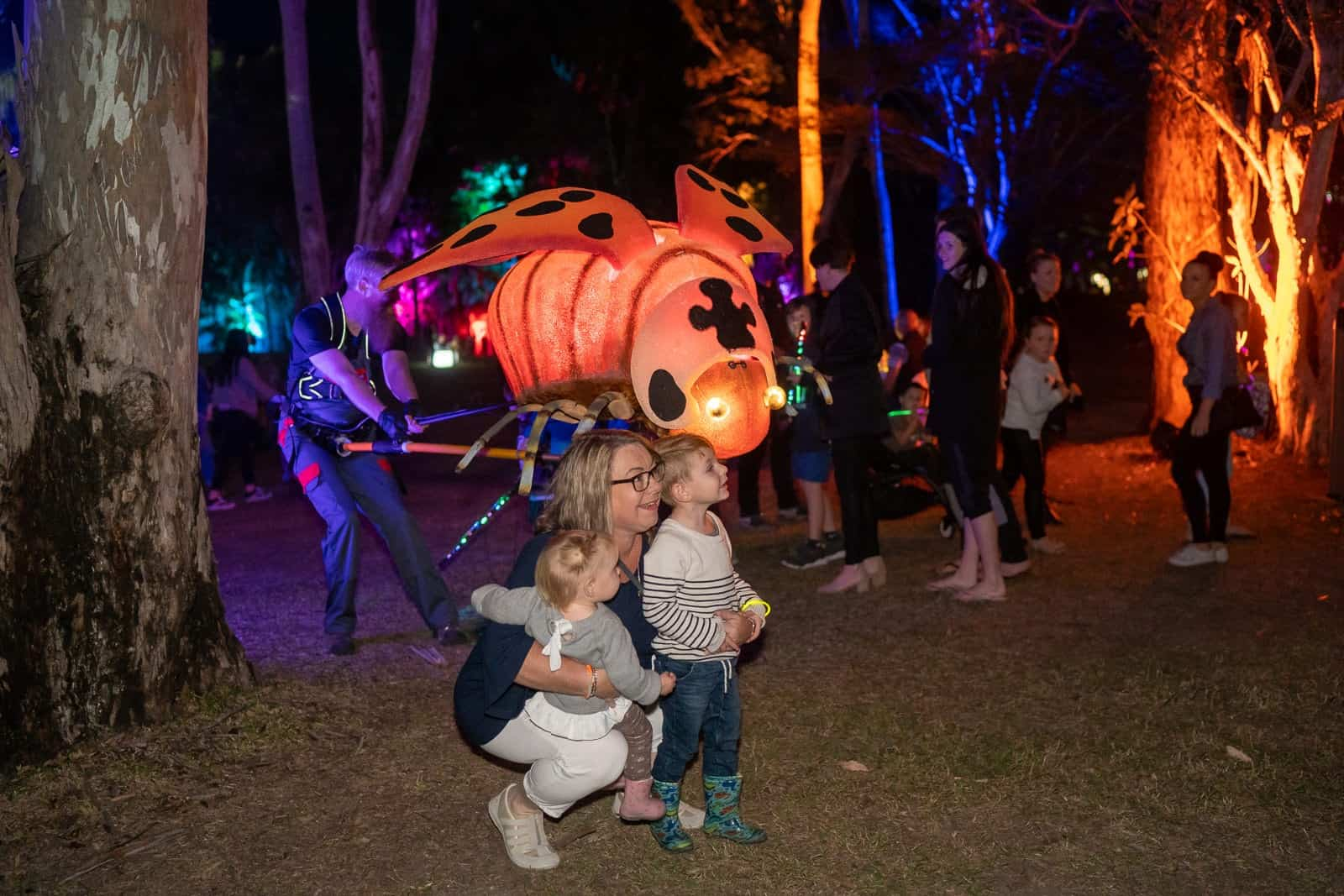 Gladstone Regional Council's Luminous 2019